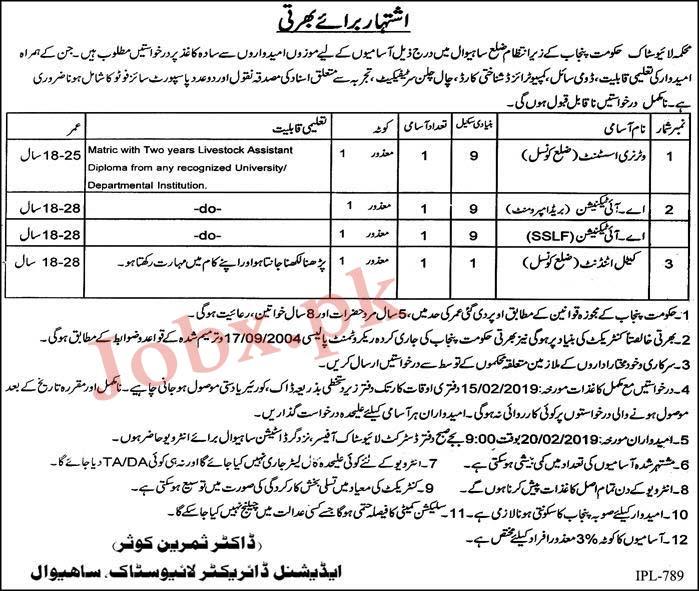 Disabled people (Mazoor Afrad ) Jobs in Livestock Department Sahiwal