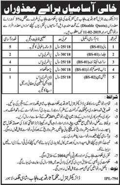 Jobs In Department Of Archaeology Govt Of Punjab 2019