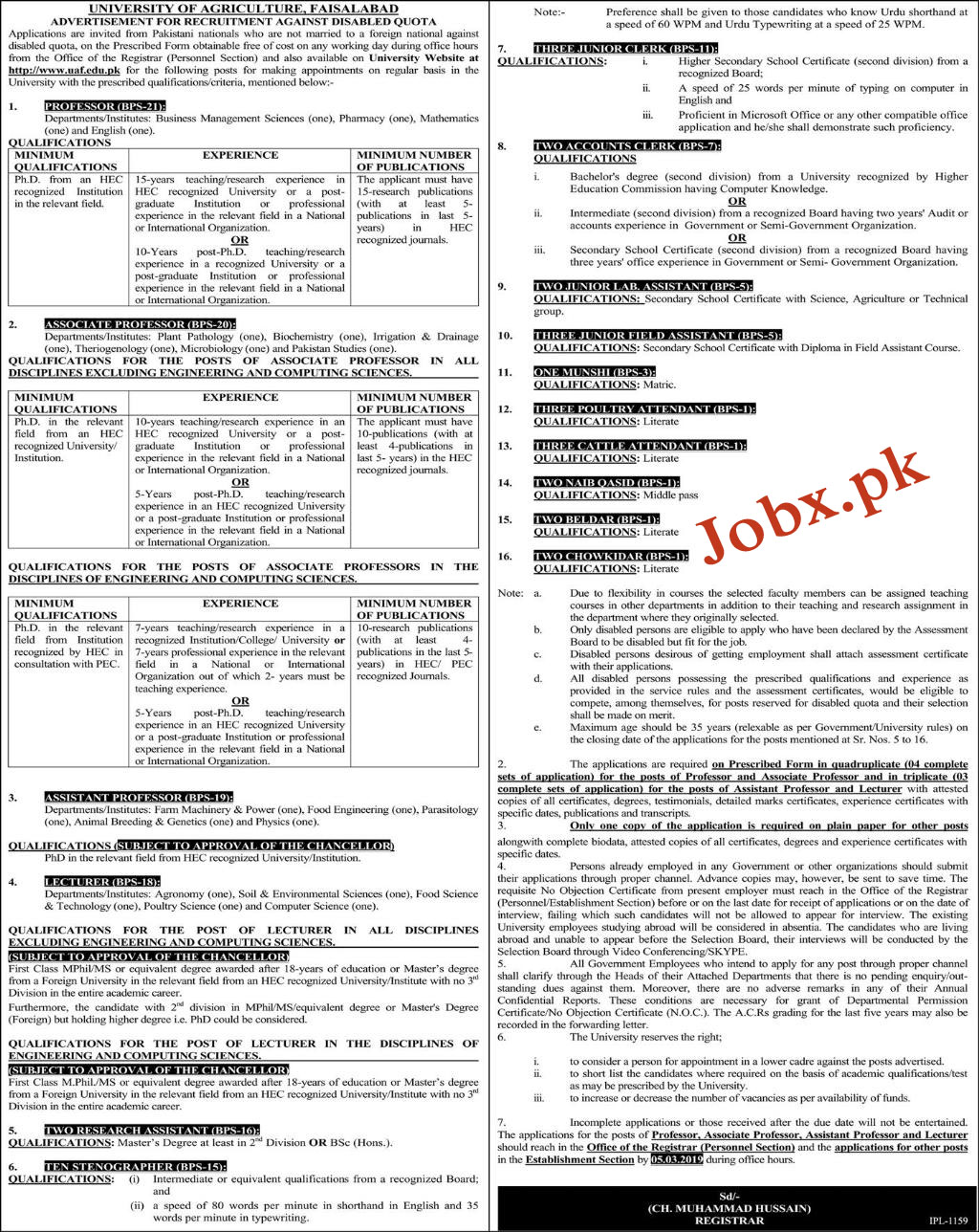 Multiple Jobs in University of Agriculture Faisalabad 07 Feb 2019