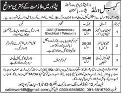 Jobs in World Cable Peshawar