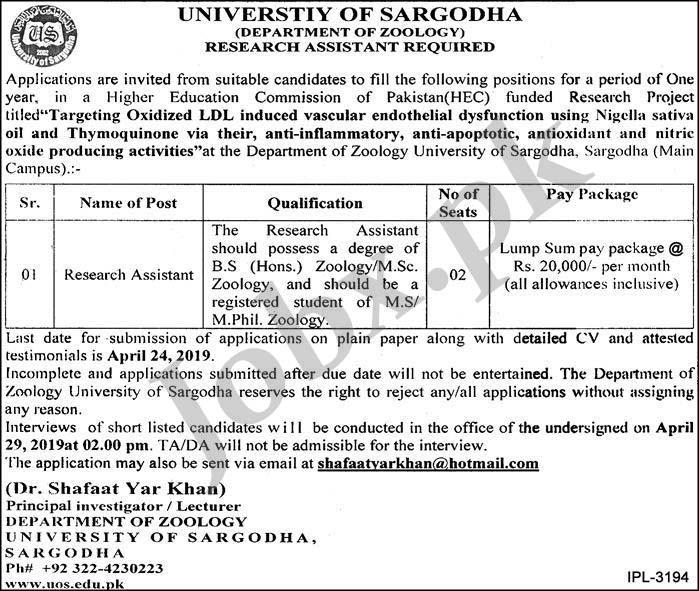 Jobs in University of Sargodah April 2019