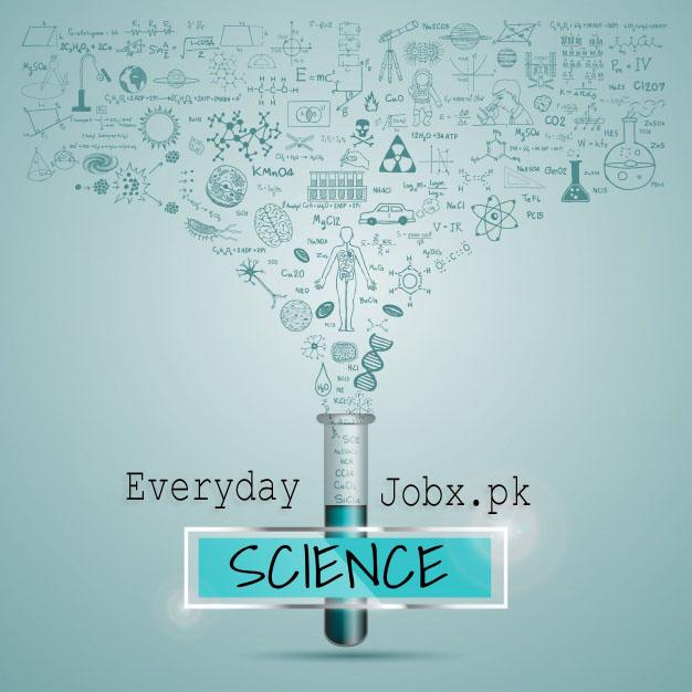Everyday Science mcqs online test