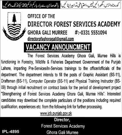 Director Forest Services Academy