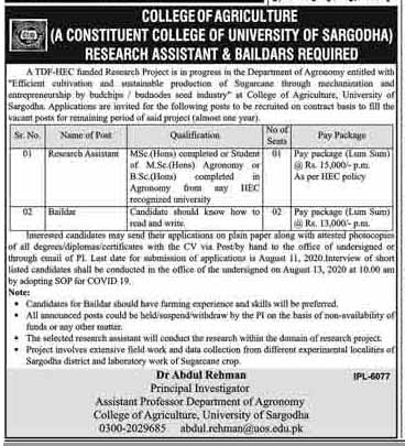 University Of Sargodha College Of Agriculture Jobs