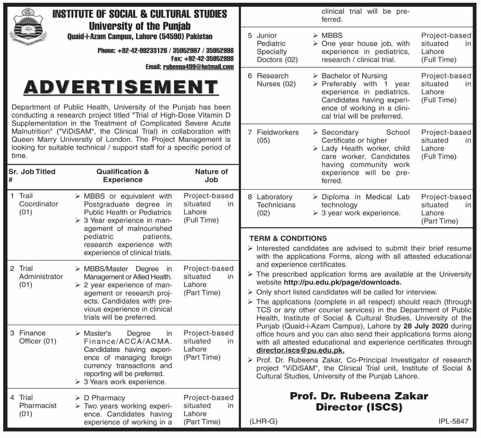 University Of The Punjab Jobs July 2020