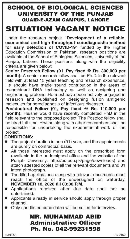 Jobs in School of Biological Sciences University of Punjab 2020