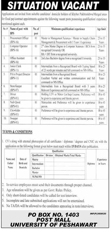 Jobs in University Of Peshawar Oct 2020