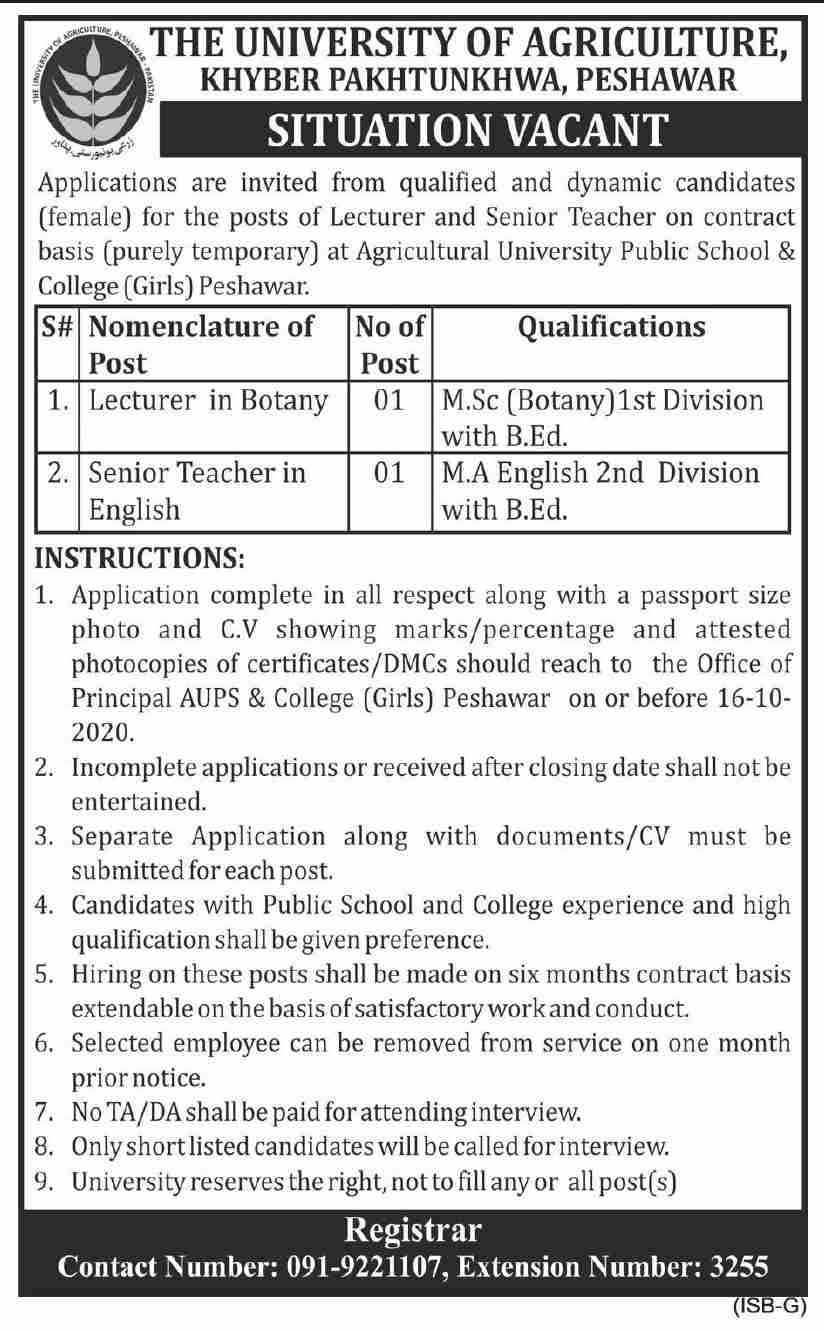 University of Agriculture Public & College Jobs