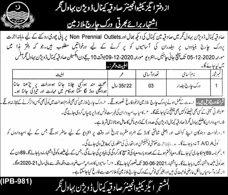 Irrigation Department Jobs in Bahawalnagar Nov 2020