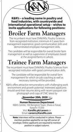 Jobs in K&Ns November 2020