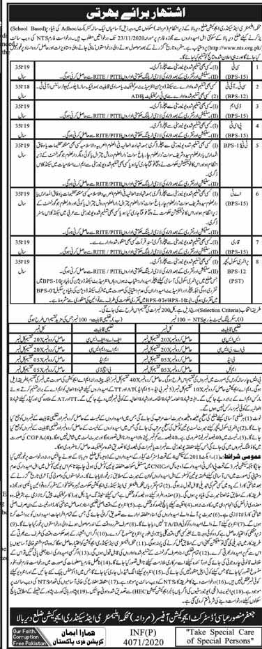NTS Jobs in Elementary and Secondary