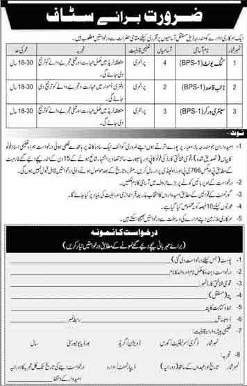 P.O Box 786 Rawalpindi Jobs 2020