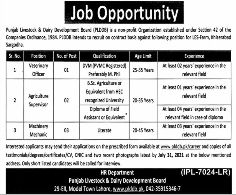Jobs in PLDDB Lahore July 2021